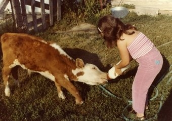 Mellisa bottle-feeding a calf