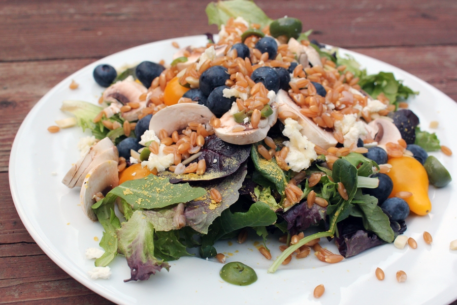dinner-salad-with-farro
